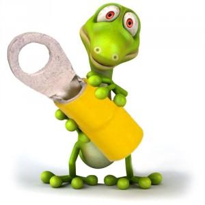desolfatore lizard